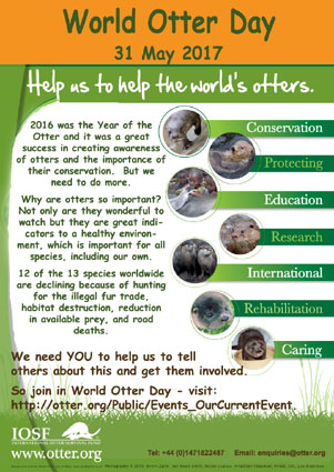 World Otter Day Poster