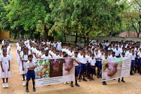 Chaminda at Sri Lanka school
